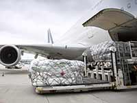 Air cargo casters