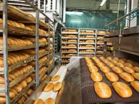 Food industry casters
